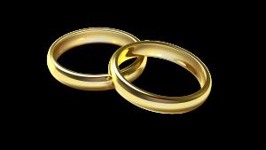 Muster-Ehevertrag für eine Doppelverdienerehe ohne Kinder.